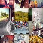 Instagram sierpień 2013