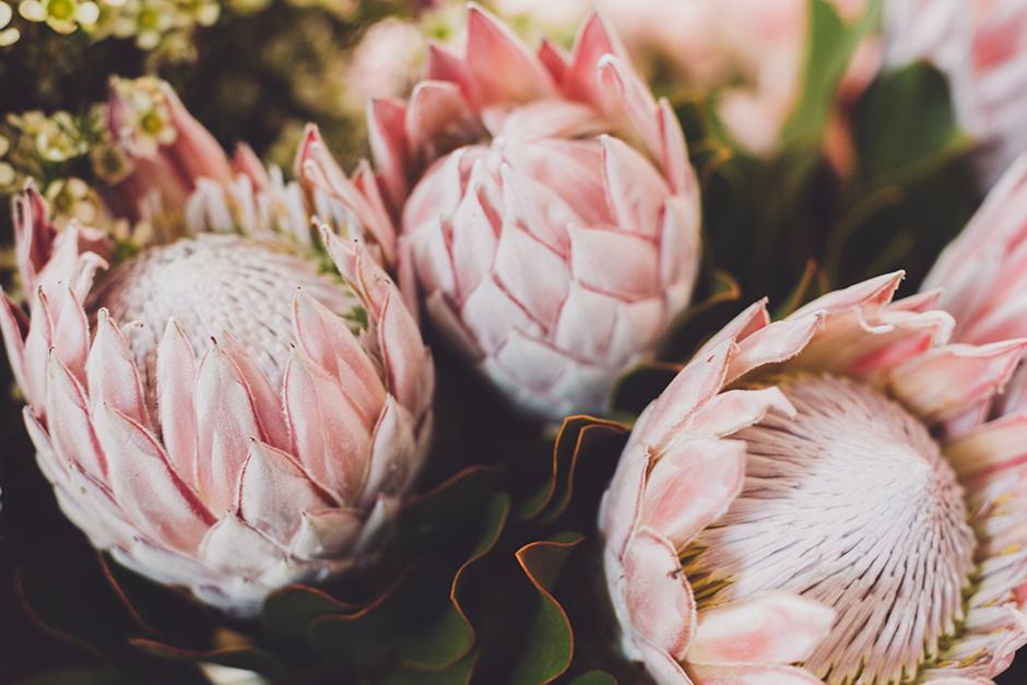 swieto-kwiatow-1